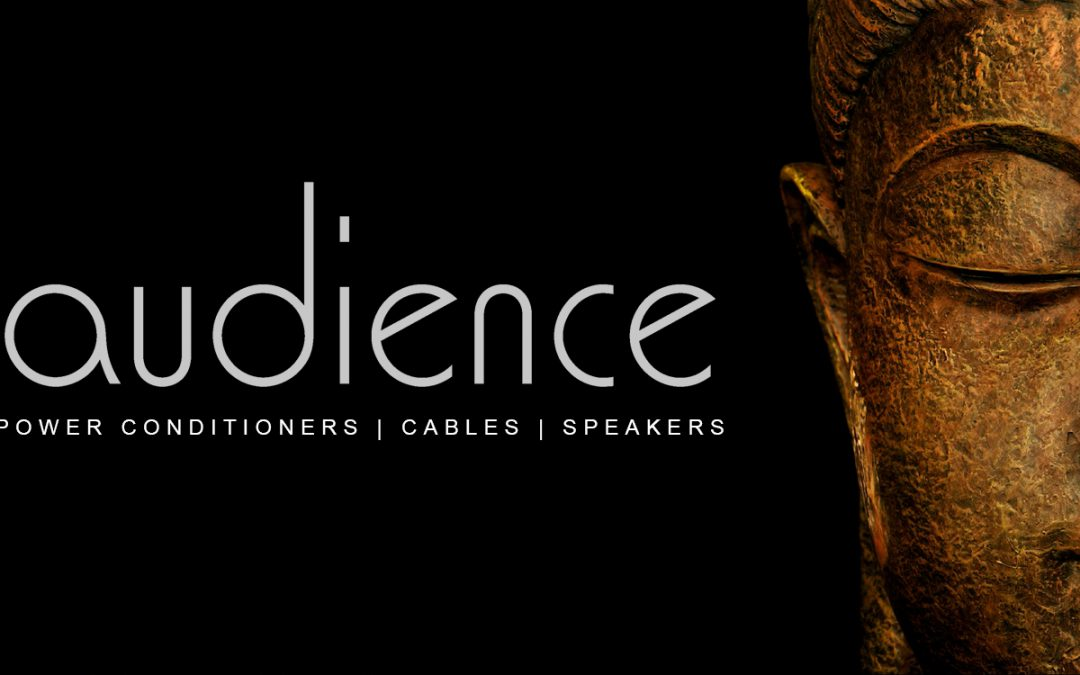 Audience Cables and Power Conditioner